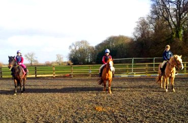 Lime Oaks Riding Centre, Hemingbrough, North Yorkshire